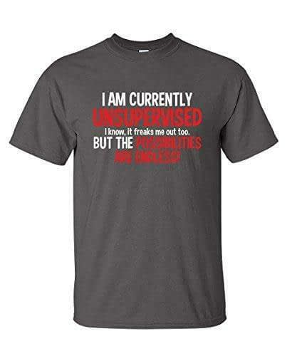I Am Currently Unsupervised Funny T Shirt Home [tag]